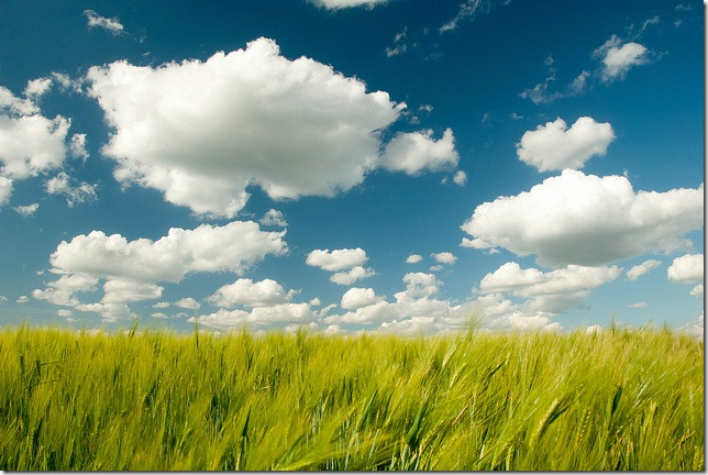 clouds by the aucitron via flickr