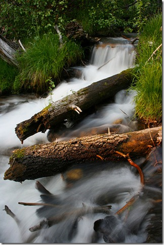 Stream - Manzanito Lake by cbruno via Flickr