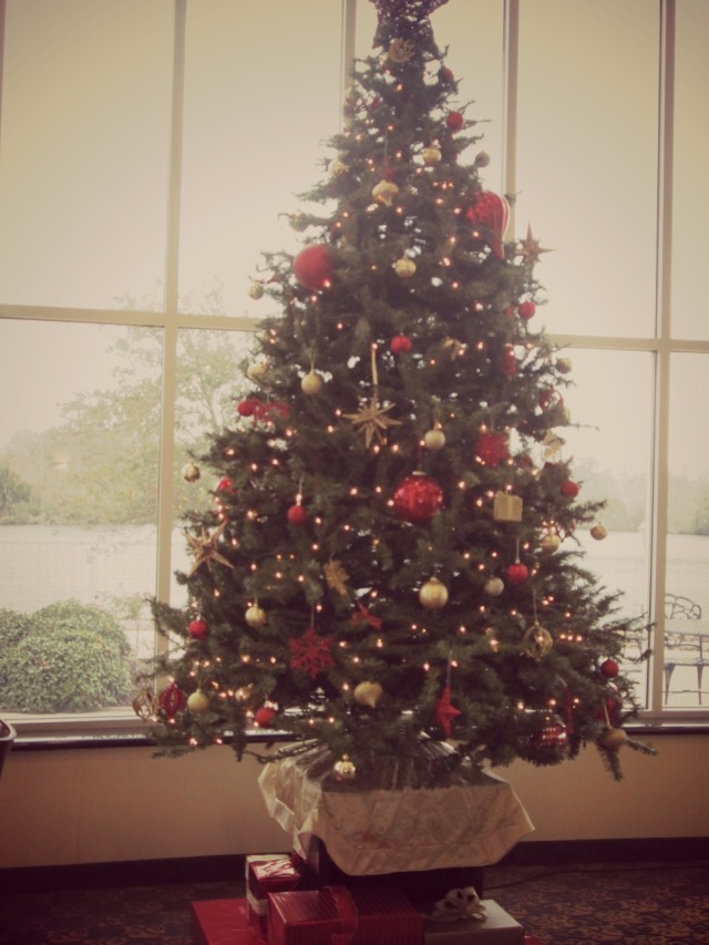 hotel christmas_5